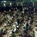 наша мечеть аль-котрова